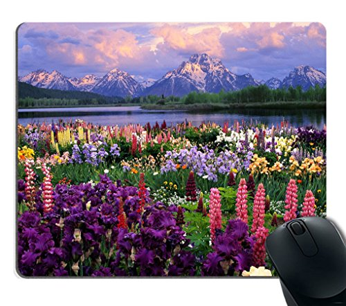 Smooffly Beautiful Flowers Mountain Sky Water Mouse Pads Customized, Eco Friendly Cloth with Neoprene Rubber Mouse Pad Desktop Mousepad Laptop Mousepads Comfortable Comput