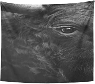 Emvency Wall Tapestry Cow Fighting Bull Head Detail in Black and White Eye Fight Animal Sport Attack Cattle Spain Decor Wall Hanging Picnic Bedsheet Blanket 60x50 Inches