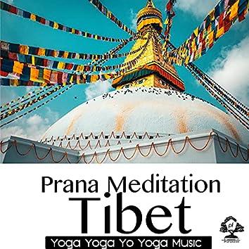 Prana Meditation: Tibet