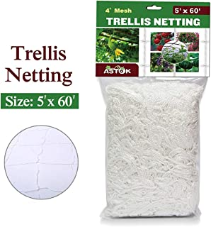 Vlesgo Trellis Netting,Heavy-duty Polyester Plant Trellis Netting Soft Crop Netting, Flexible String Garden Net Climbing, Fruits, Vegetables Flowers-White,1 Pack (5'x 60')