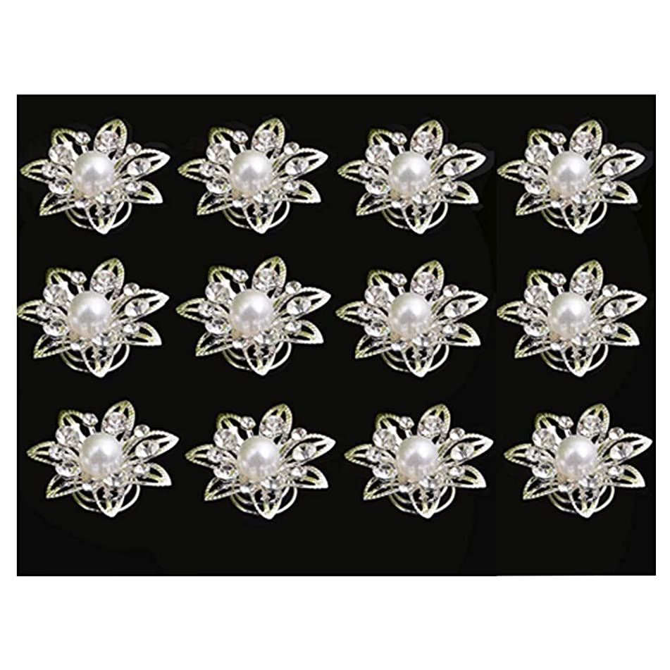 Lanyan 12pcs Clear Crystal Flower Swirl Hair Twists Coils Spirals Hair Pin Clip Accessories for Women And Girls
