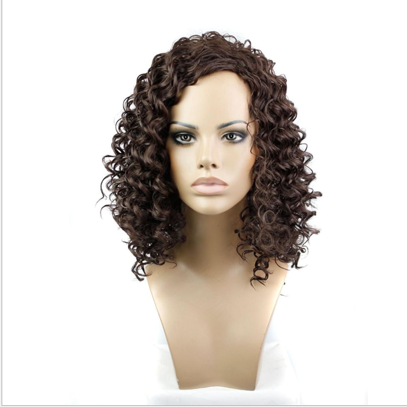 該当する肯定的触覚JIANFU 女性のための合成カーリーヘアウィッグショートスモールヘアブラウンブラック耐熱高温15inch / 180g (Color : Brownish black)