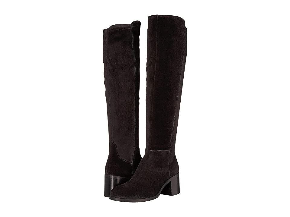 Cordani Bentley (Black Suede/Stretch) Women