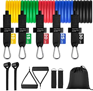 Resistance Bands Set - 11pcs, Workout Bands with Door Anchor, Handles, Waterproof Carry Bag, Legs Ankle Straps for Resista...