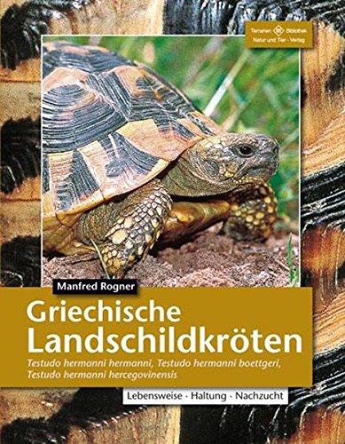 Griechische Landschildkröten: Testudo Hermanni Hermanni (Terrarien-Bibliothek)