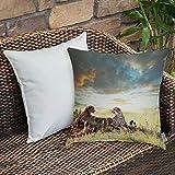 RONGJIN Dekokissen Kissenhülle,Safari-Dekor, Zwei Geparden Afrika Natur Gras gefährliche Tiere...