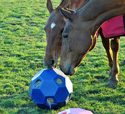 Parallax Horse Hay Play Ball Orange,One Size