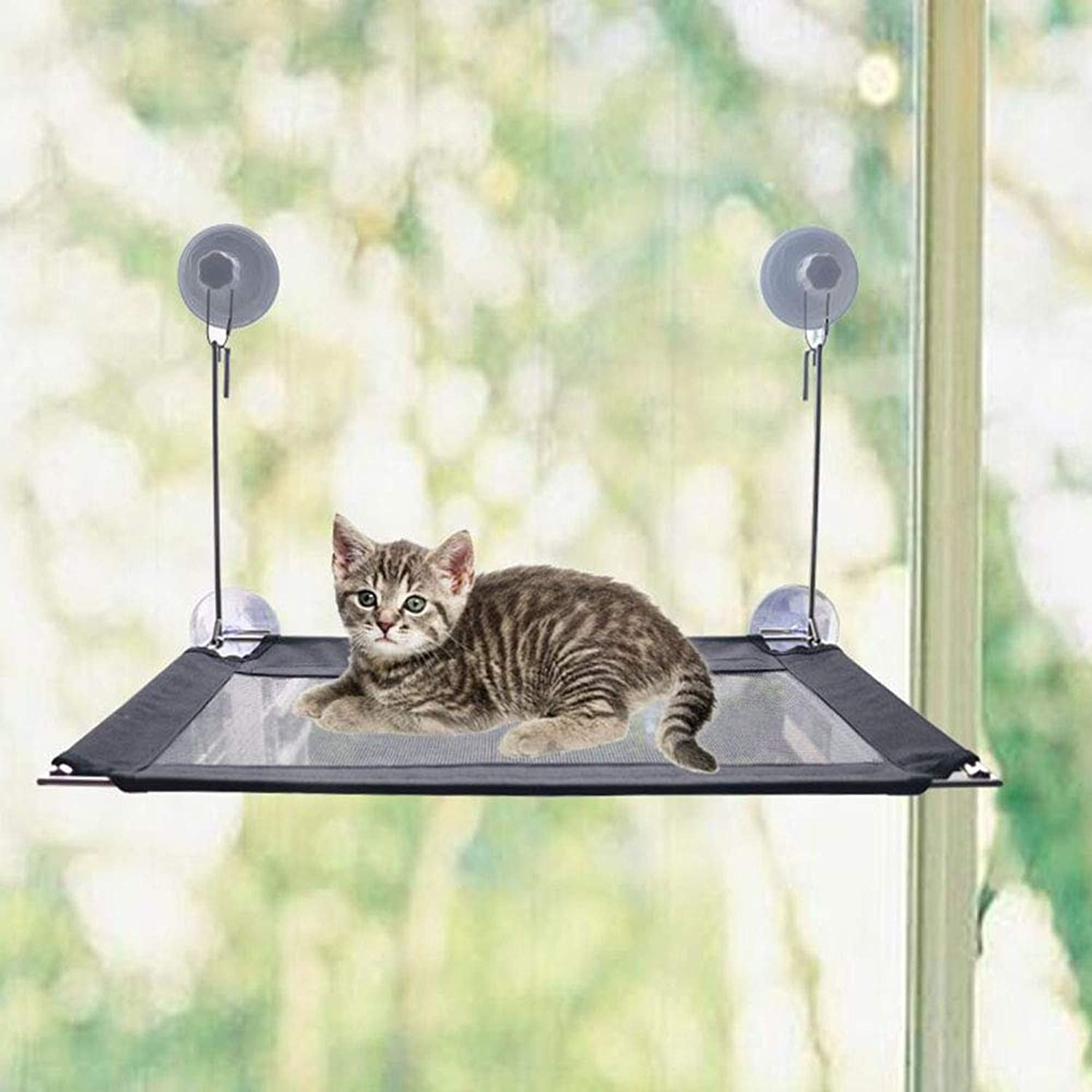 Cat Window Perch, Ampher Cat Hammock Window Mounted Cat Bed con Stainless Steel Frame 4 Heavy Duty Sucking Cups hold Up to 40lbs