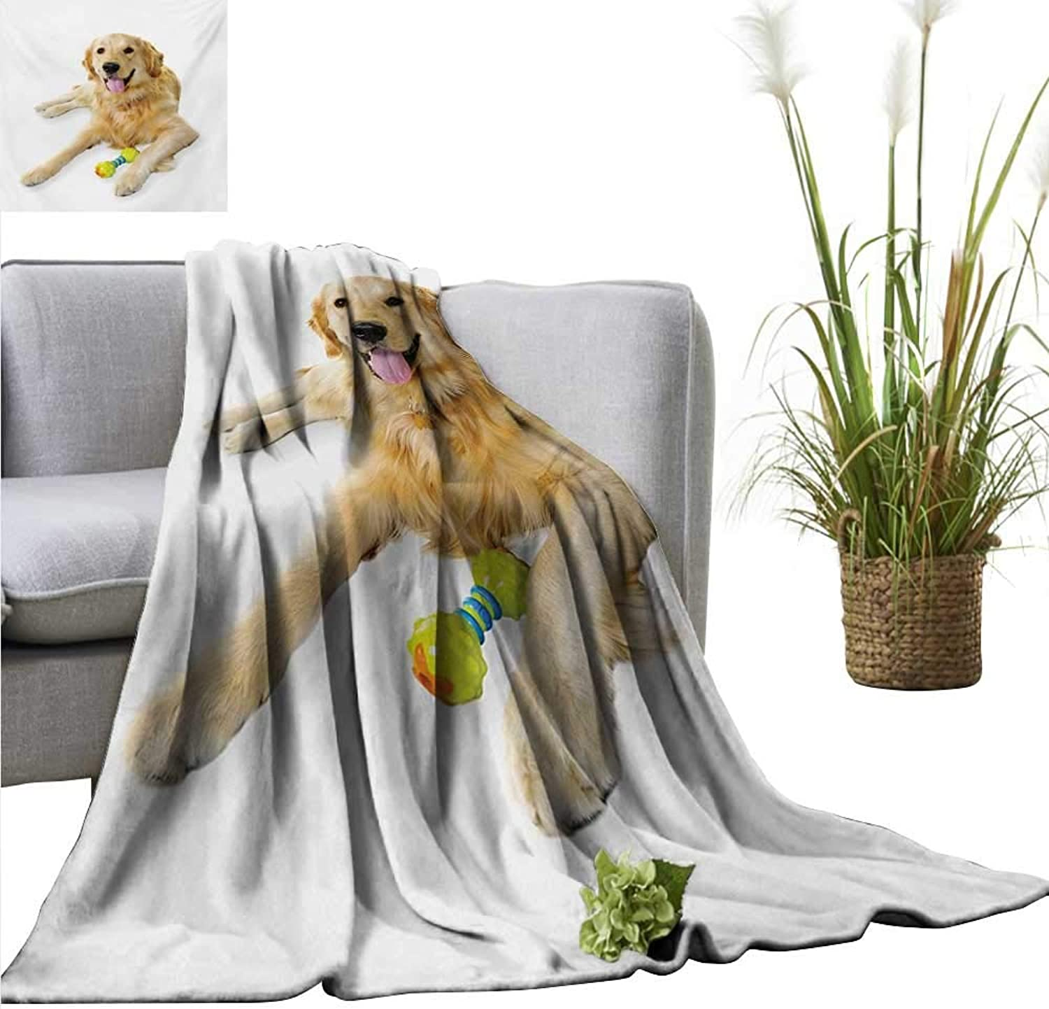 AndyTours Cool Blanket,golden Retriever,Pet Dog Laying Down with Toy Friendly Domestic Puppy Playful Companion,Multicolor,for Bed & Couch Sofa Easy Care 60 x63