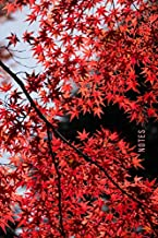 Notes: Password Book Cleverly Disguised With Beautiful Design / Japanese Maple Red Leaves Cover / Discreet Internet Username and Login Logbook / Alphabetical Tabs Large Print
