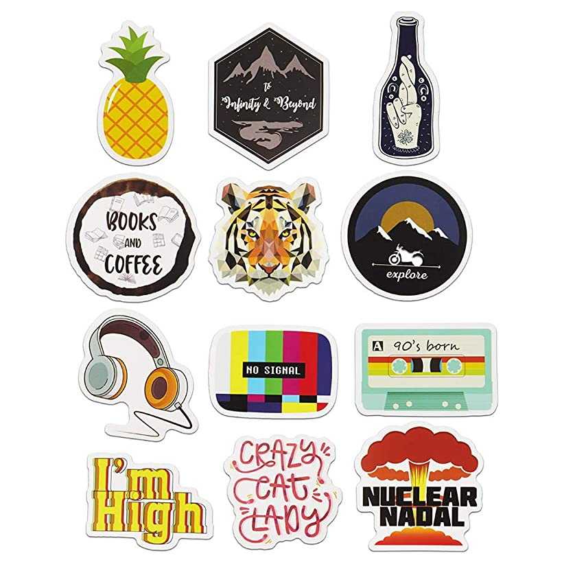 Cute Aesthetic Stickers for Laptop, Car, Hydro Flask, Water Bottle Decal Sticker Pack(12pcs)