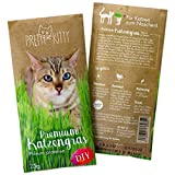 PRETTY KITTY 1 Pouch of Cat Grass Seeds Fast Growing - 1x 25g meadow cat's tail seeds for about 10 flowerpots – fibre supplements for cats by PrettyKitty