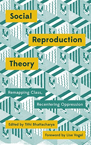 Social Reproduction Theory: Remapping Class, Recentering Oppression (Mapping Social Reproduction Theory) (English Edition)