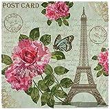 BONRI Set di 2 Carta da Lettere Vintage Parigi con Torre Eiffel Farfalla Peonia Fiore Tovaglioli di Stoffa Verde Foglia Tovaglioli in Poliestere Lavabile per Tavolo da Pranzo Festa di matrimo 20'X20'