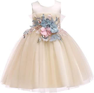 GFDGG 子供用スカートクリスマスプリンセスドレスPettiskirt子供用ドレス女の子のドレス (色 : Champagne, サイズ : 100cm)