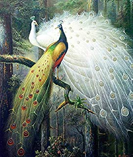 Lsinyan Peacock Lovers Cross Stitch Kit World Famous Paintings DIY Needlework Embroidery Set Animals Cross Stitching Wall Home Decor (Silk Thread)