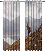 shenglv Deer, Curtains Small Window, Wild Stag Overlooking Loch Torridon and Dramatic Western Ross Mountain Nature View, Curtains Girls Bedroom, W96 x L96 Inch, Brown White