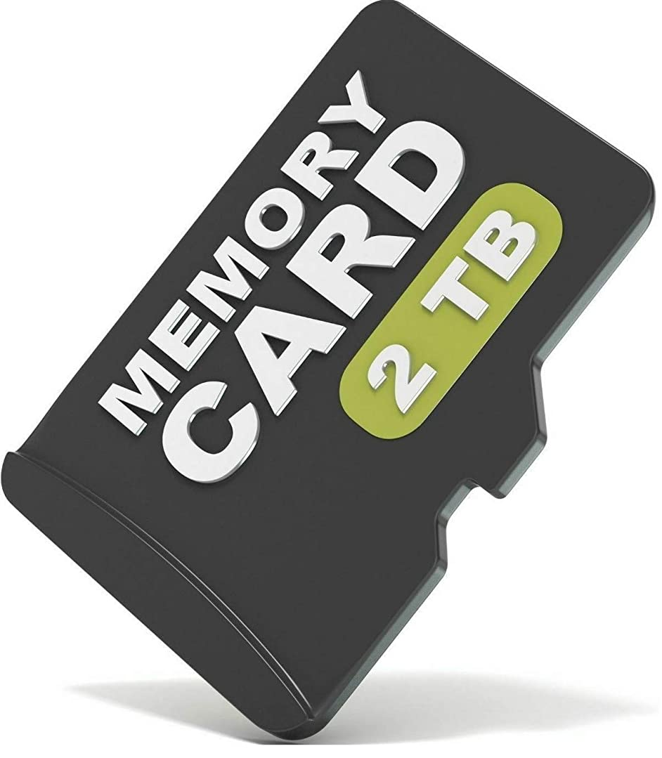 キャメルナインへ出演者2TB Micro SD SDXC TF メモリーカード 2048GBs