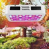 AC85-265V Ahorre más energía Lámpara de cultivo LED Lámpara de cultivo para plantas de interior Para plantas para(European regulations)