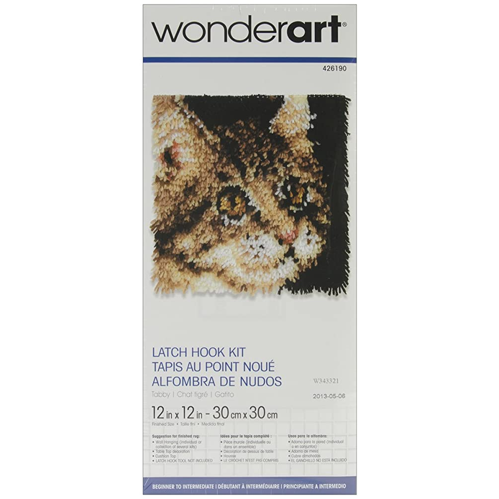 Wonderart Tabby Latch Hook Kit, 12