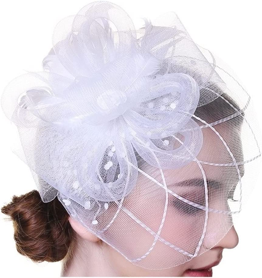 HYMD Tea Party Hats Women Flower Mesh Ribbons Feathers Hat Headband or a Clip Cocktail Tea Party (Color : White, Size : One Size)