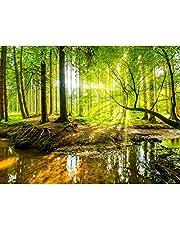 Fotobehang Bos Landschap - Vliesbehang Woonkamer Slaapkamer Kantoor Hal Decoratie Muurschilderingen XXL Moderne Wanddecoratie - 100% MADE IN GERMANY - Runa Behang - 9141010a