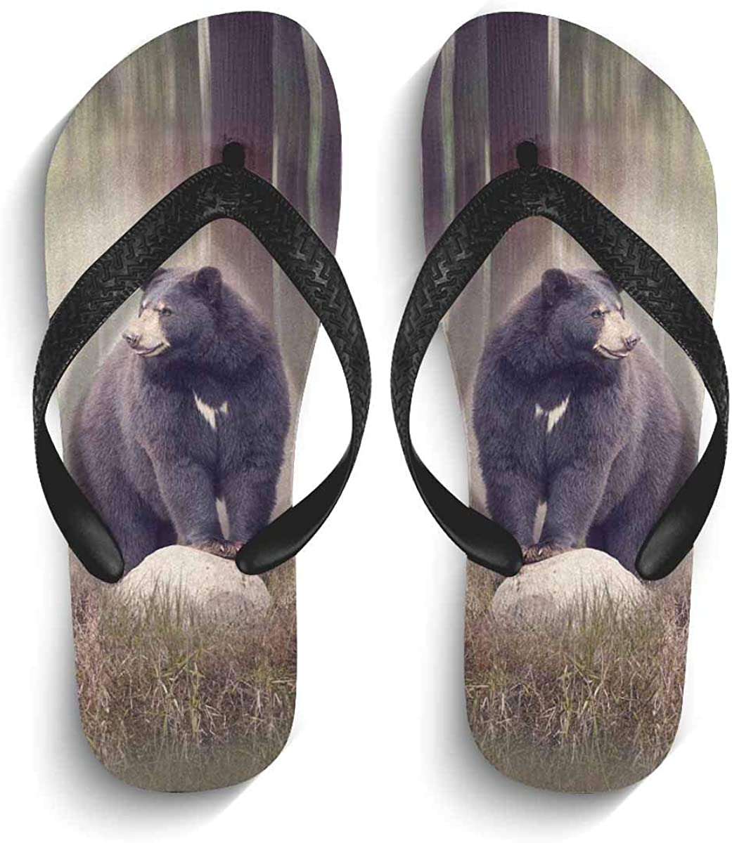 InterestPrint Men's Flip Flop Sandals Black Bear on Rock in The Woods Summer Beach Thong Sandal Outdoor Footwear S