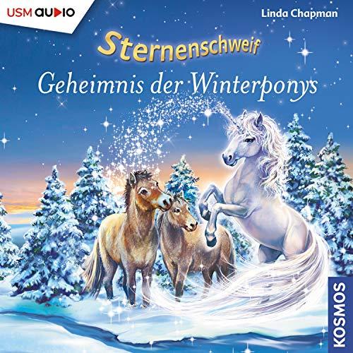 Geheimnis der Winterponys cover art