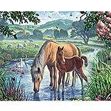 5DDiamondPainting Flor rosa río animal caballo 5D Kit de pintura de diamante,Bordado de punto de cruz de diamantes de imitación Artesanía30x40 cm(Sin marco)