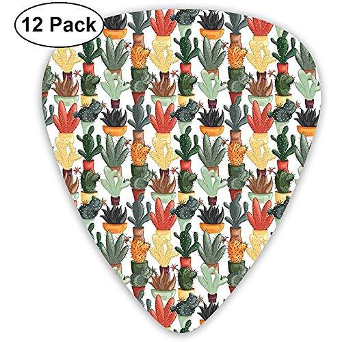 Gitaar Picks 12-Pack, Mexicaanse Succulent In Pots Botanische Thema Illustratie Huis Plant Arrangement