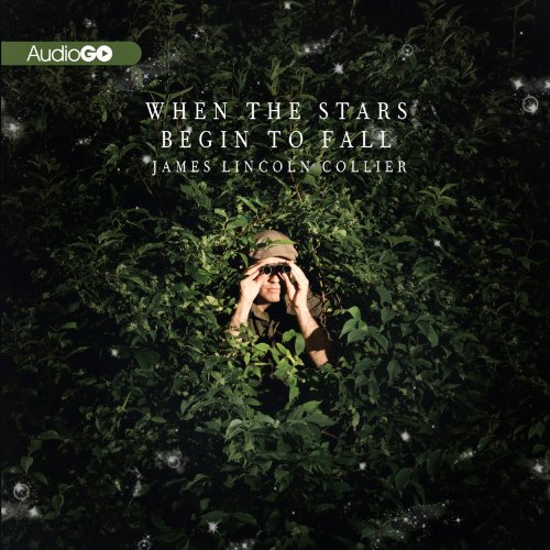 When the Stars Begin to Fall audiobook cover art