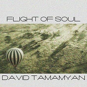 Flight of Soul