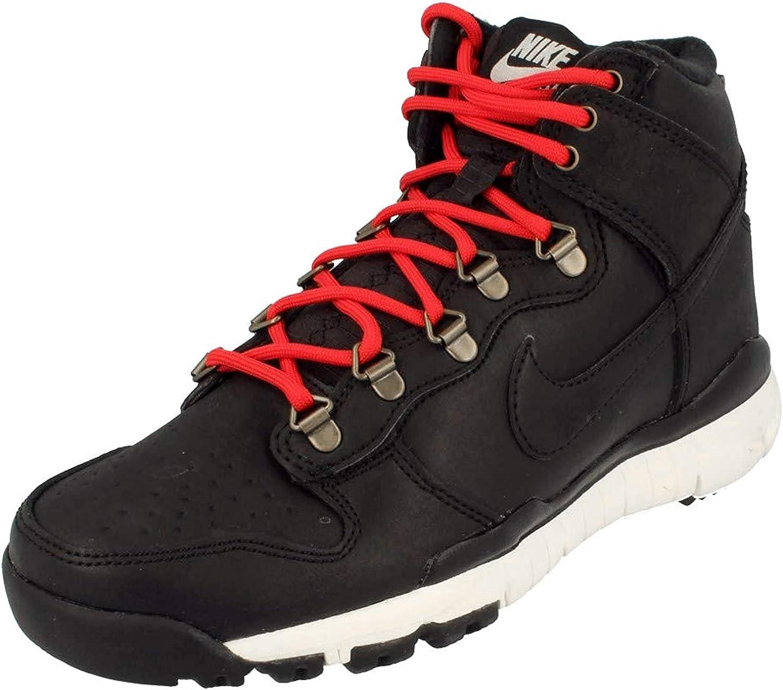 Nike SB DUNK HIGH BOOT mens fashion