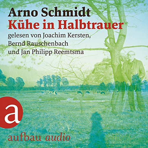 Kühe in Halbtrauer  By  cover art
