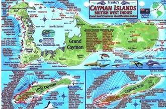 Franko Bermuda mini Map& Reef Creatures- Card