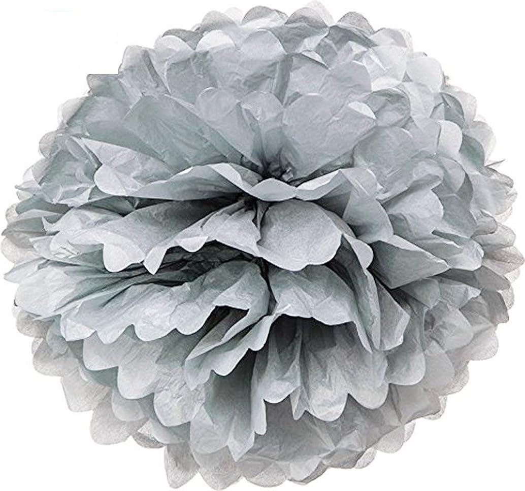 Hmxpls 10pcs Silver Tissue Hanging Paper Pom-poms, Flower Ball Wedding Party Outdoor Decoration Premium Tissue Paper Pom Pom Flowers Craft Kit