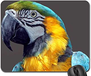 Mouse Pads - Parrot Ara Bird Colorful Plumage Color