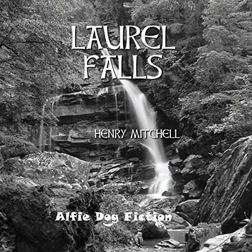 Couverture de Laurel Falls