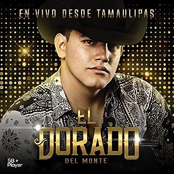 En Vivo Desde Tamaulipas