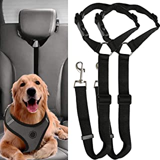 Bungee Buffer and Reflective Stripe Black Suitable for all Types of Dogs Winzwon Dog Seat Belt for Car 5FT Dog Lead with Comfortable Padded Handle