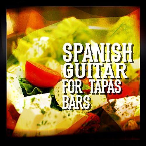 Spanish Restaurant Music Academy, Acoustic Guitars & Instrumental Guitar Music