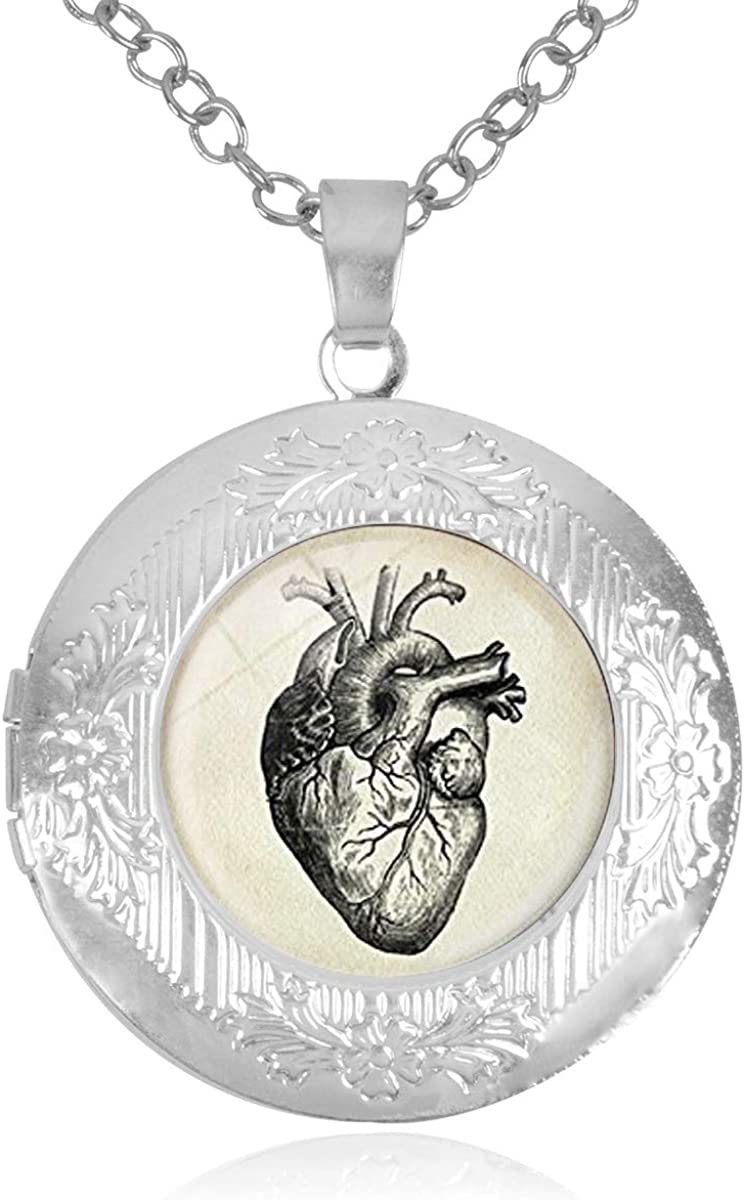 Heart Anatomical Drawing Locket Mail order Necklace Holds That Pictures in Credence