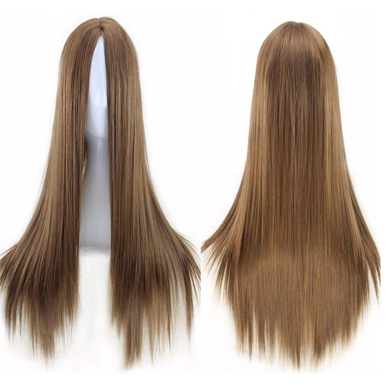 歌教室インフレーションKerwinner ミドルの前髪のかつら耐熱ウィッグ65 cmのロングストレートウィッグの人々のためのパーティーパフォーマンスカラーウィッグ(マルチカラー) (Color : Light brown)