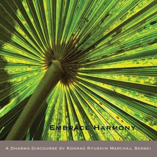 Embrace Harmony audiobook cover art