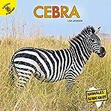 Cebra: Zebra (Animales africanos (African Animals))