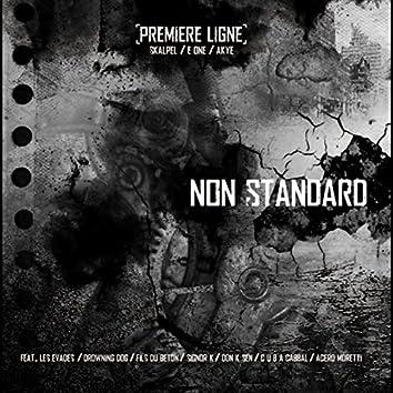Non Standard