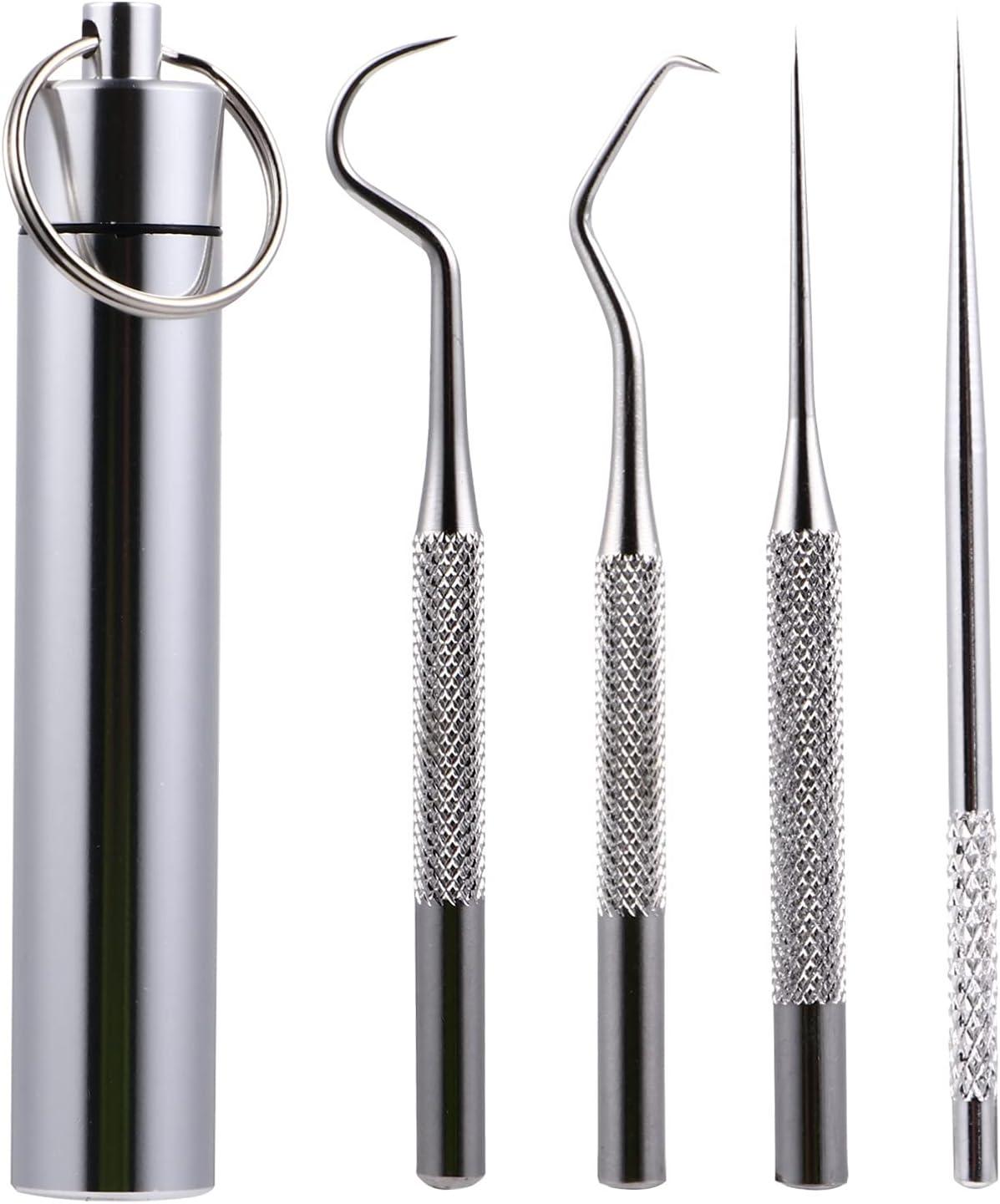 Hemoton Herramientas Dentales de Acero Inoxidable Herramientas de Limpieza de Dientes Reutilizables con Soporte de Almacenamiento Palillo de Dientes de Viaje Raspador de Tarter Dental