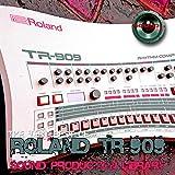 Para Roland TR-909 Analog Rhythm Composer - Grande, único, original Samples/Loops Studio Library en DVD o descargar