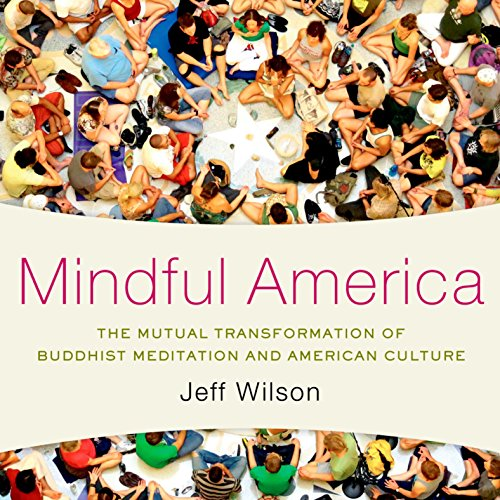 Mindful America audiobook cover art