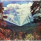 Innerspeaker (Vinyl)